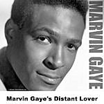Marvin Gaye Marvin Gaye's Distant Lover