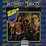 Blowfly Disco