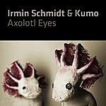 Irmin Schmidt Axolotl Eyes