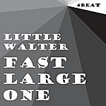 Little Walter Fast Large One