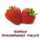 Subsky Strawberry Fields (2-Track Single)