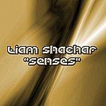 Liam Shachar Senses (2-Track Single)