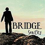 Bridge Sea/City