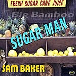 Sam Baker Sugar Man