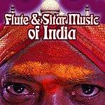 Vijay Raghav Rao Flute & Sitar Music Of India