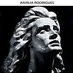 Amália Rodrigues Asas Fechadas
