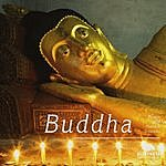 Biosphere Buddha
