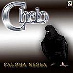 Chelo Paloma Negra
