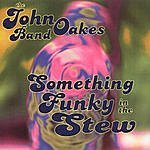 The John Oakes Band Something Funky In The Stew