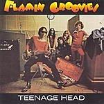 The Flamin' Groovies Teenage Head