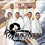 Alacranes Musical Furia Alacranera
