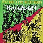 Ziggy Marley & The Melody Makers Hey World