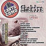 New York Orchestra Canta Como: Shakira