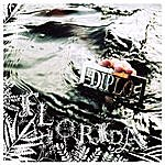 Diplo Florida