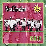 New Direction Rain