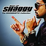Shaggy The Boombastic Collection: Best Of Shaggy (International Edition)