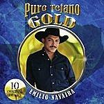 Emilio Navaira Puro Tejano Gold