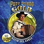 David Lee Garza Puro Tejano Gold