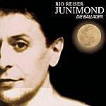 Rio Reiser Junimond - Die Balladen