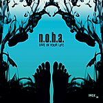 N.O.H.A. Dive In Your Life