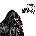 Charlie Hunter Baboon Strength