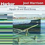 Joel Harrison Harbor