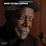 David Newman Diamondhead