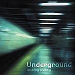 Analog P*ssy Underground (Vinyl)