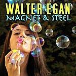Walter Egan Magnet & Steel