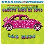 Wayne Fontana Groovy Kind Of Love: The Hits