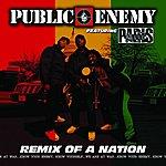 Public Enemy Remix Of A Nation (Feat. Paris) (Parental Advisory)