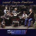 Laurel Canyon Ramblers Blue Rambler 2