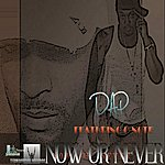 DAP Now Or Never