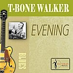 T-Bone Walker Evening