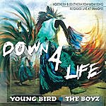 Young Bird Down 4 Life: Northern & Southern Pow-Wow Songs Recorded Live At Shakopee