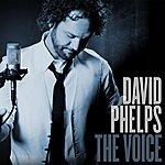 David Phelps The Voice