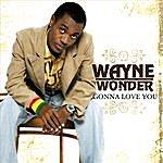 Wayne Wonder Wayne Wonder  (itunes)