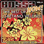 Caetano Veloso Bossa Now! Vol. 4: The Best Of Caetano Veloso