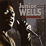 Junior Wells Best Of The Vanguard Years