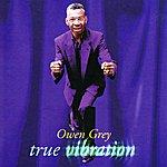 Owen Grey True Vibration