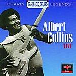 Albert Collins Live