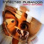 Infected Mushroom Deeply Disturbed