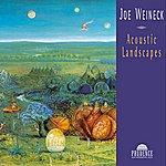 Joe Weineck Acoustic Landscapes