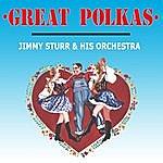 Jimmy Sturr Great Polkas