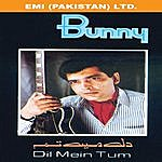 Bunny Dil Mein Tum