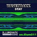 Wavetraxx Stay