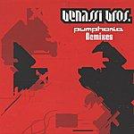 Benassi Bros. Pumphonia Remixes