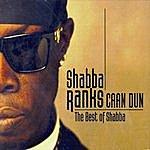Shabba Ranks Caan Dun