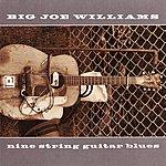 Big Joe Williams Nine String Guitar Blues