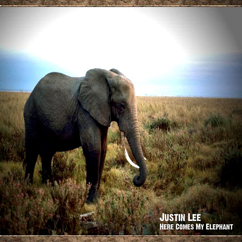 Cover Art: Here Comes My Elephant